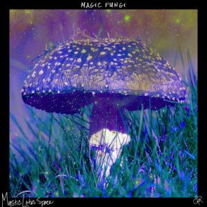purple tinted psychedelic mushroom artwork by mysticlotus.space